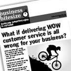 What if delivering WOW customer service is all wrong for your business?